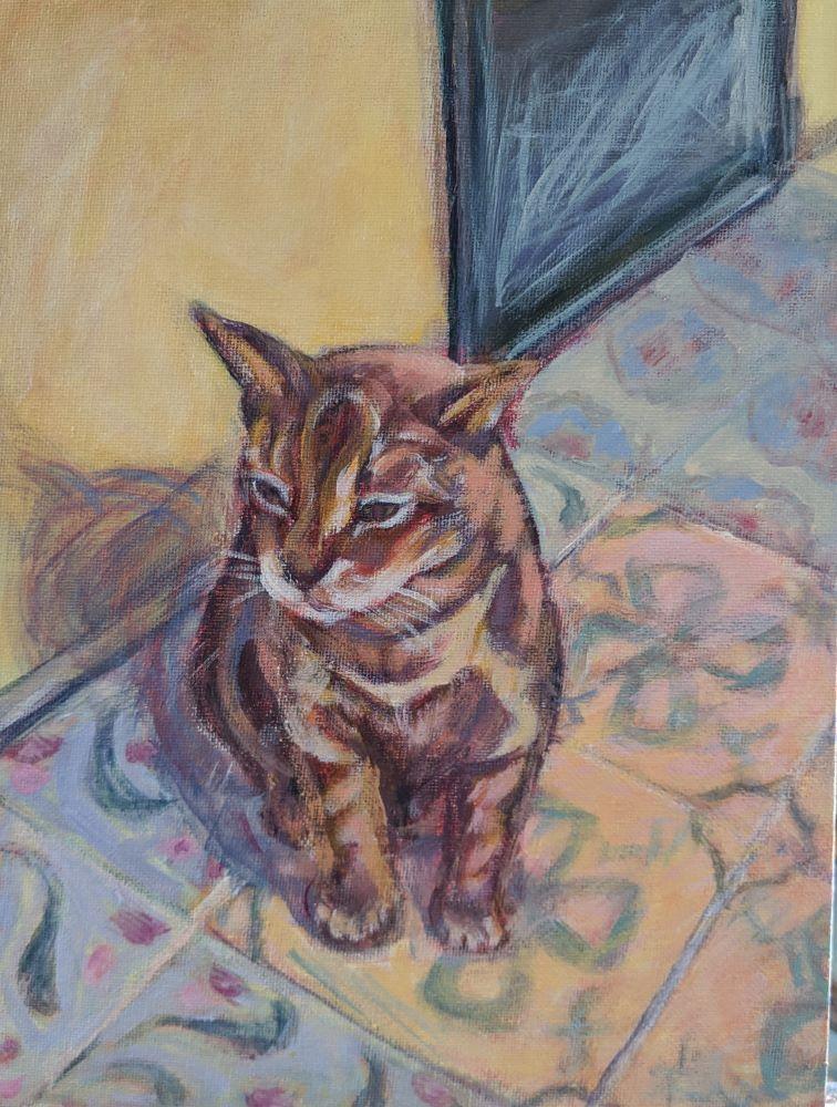 key-west-cat